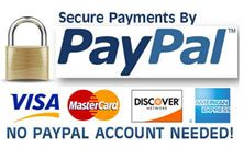 Pay Pal Secure